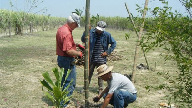 provision-of-hope-mexico-garden-update